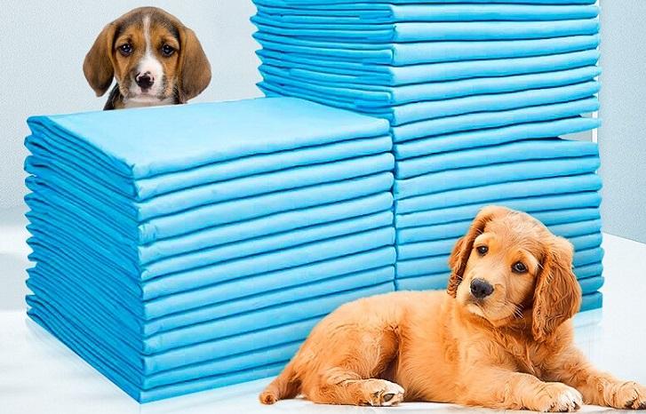 زیرانداز بهداشتی حیوانات و کاربردهای آن